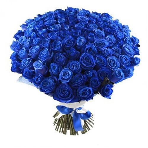 101-roses-flowerdelivery.moscow-blue