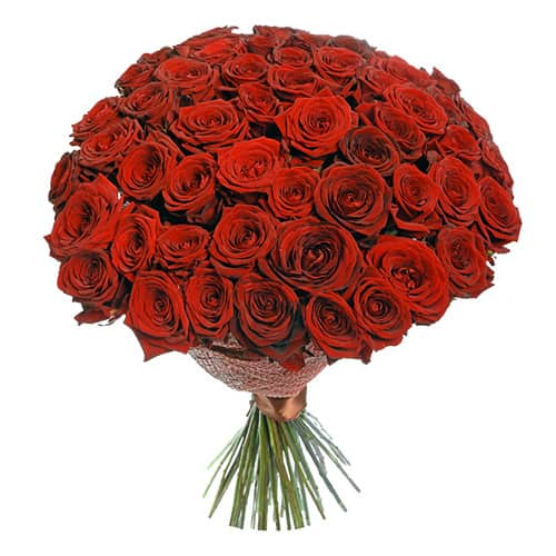 101-roses-flowerdelivery.moscow-red